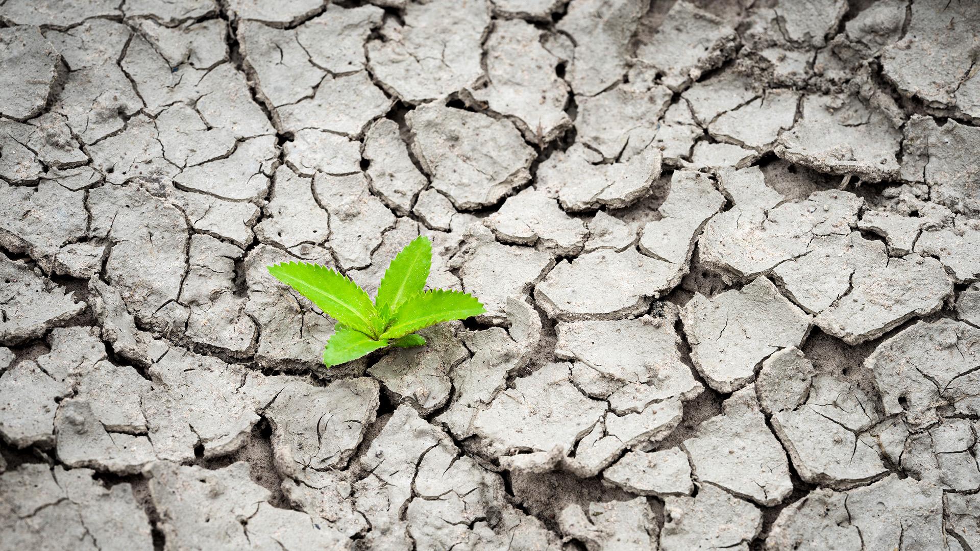 19kw48 Klimaschutz