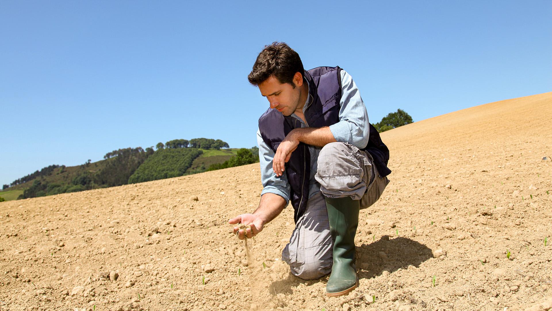 20kw03 Trockenheit betrifft Bauern