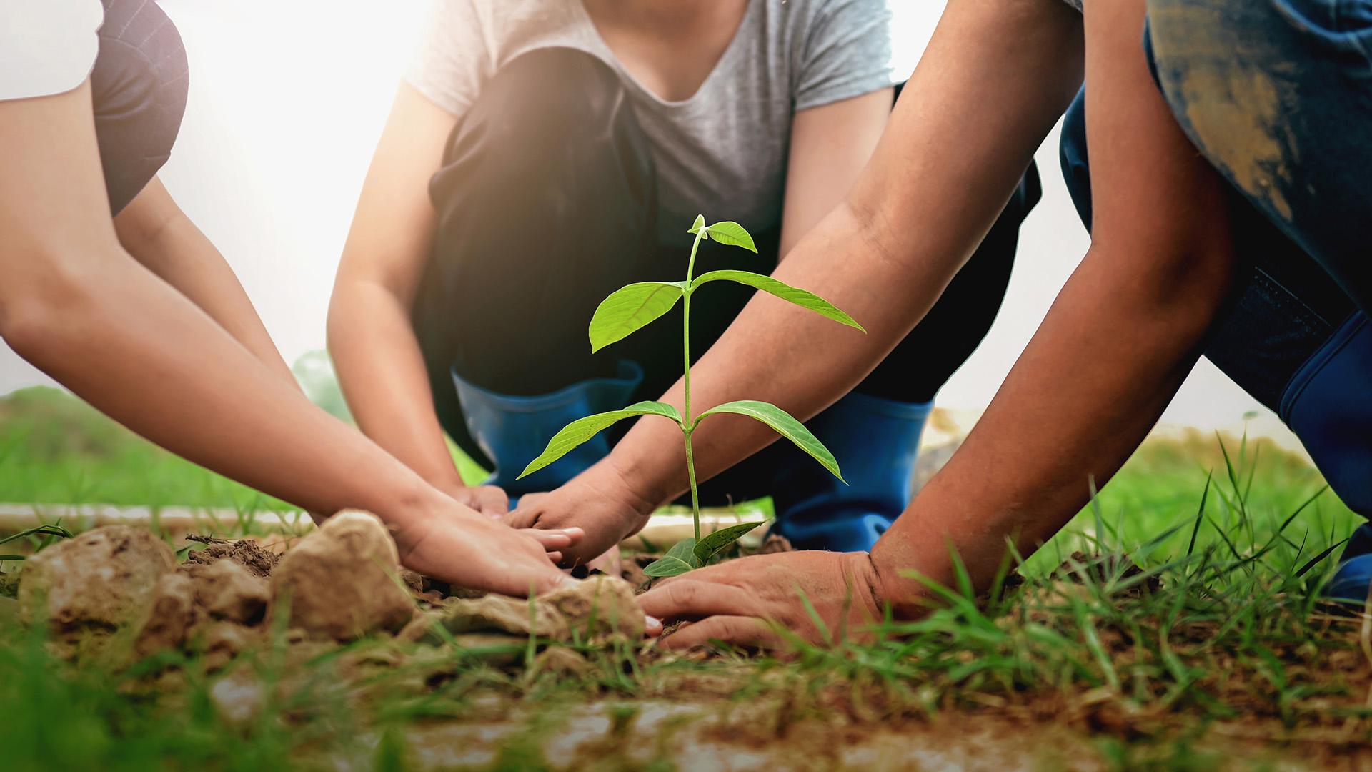 Klima- & Umweltschutz