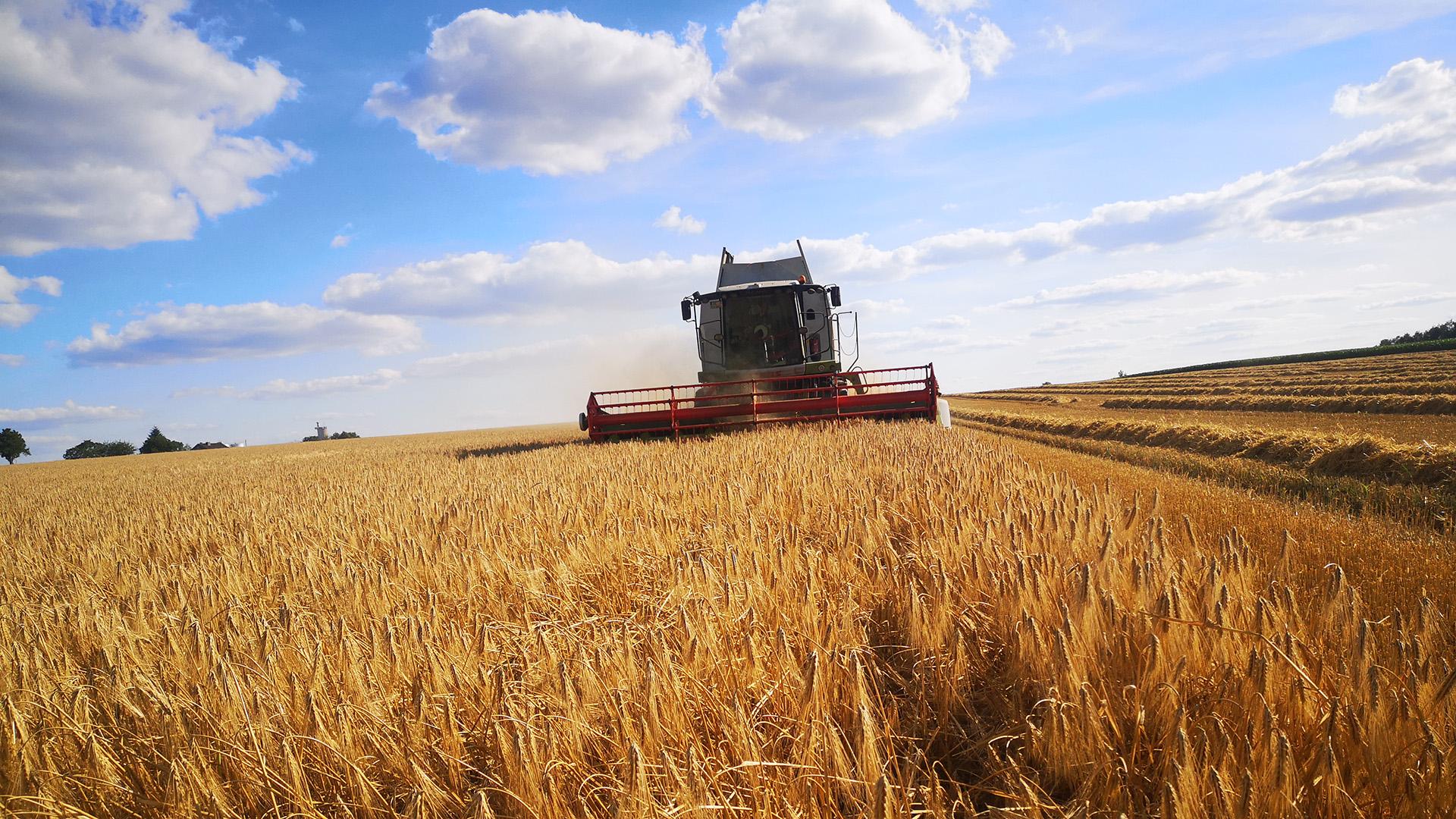 21kw13_Landwirtschaft_ci_123576